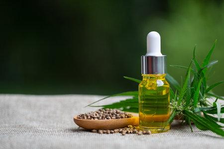 Hemp seeds and cbd hemp oil. Hemp seeds in wooden spoon and hemp essential oil in small glass bottle, medical marijuana concept.