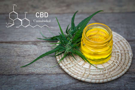 CBD elements in Cannabis, Glass bottles containing  hemp oil,  drugs extracted , CBD Cannabis Oil  of researchers or medical team. Herbal alternative medicine. 版權商用圖片
