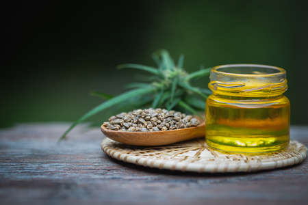 Glass bottles containing  hemp oil and hemp seeds in a wooden spoon,  drugs extracted CBD Cannabis Oil  of researchers or medical team. Herbal alternative medicine.