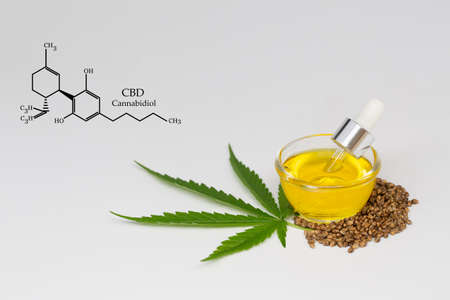CBD cannabis oil. Hemp oil and  hemp seed isolated on white background. Healthy cannabis oil. Banque d'images