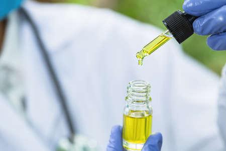 Drops of Hemp oill, CBD cannabis oil in pipette,    medical marijuana  concept.