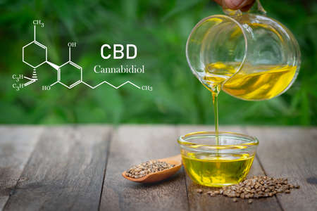 Pouring hemp oil into glass Jar and hemp seeds in a wooden spoon on a green hemp leaf background, CBD Hemp oil. Banque d'images