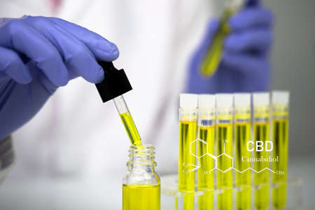 Hemp oil research, Researcher holding a dropper with hemp oil product. CBD cannabis oil. medical marijuana concept.