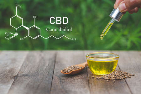 CBD elements, Hand holding Pipette with cannabis oil against Cannabis plant. Banque d'images