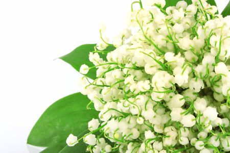 Bouquet of lilies of valley with green leaves isolated on white background photo