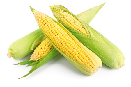 Fresh ear of corn with green leaves isolated on white background photo