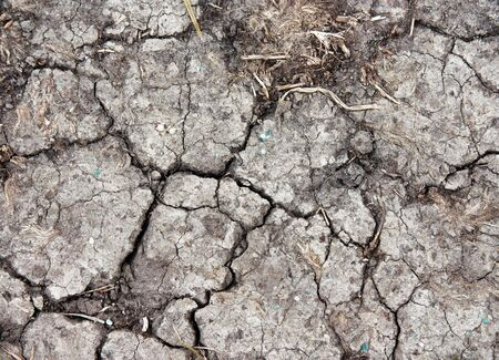 fissure: Dry land, cracked ground texture, nature background photo