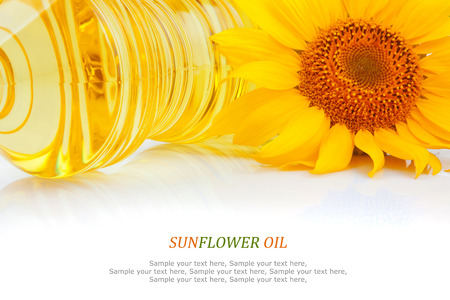 Sunflower oil in plastic bottles and yellow flower on white, food ingredient  photo