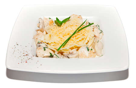 ingestion: Pastai with chicken, creamy sauce and cheese, salad on plate