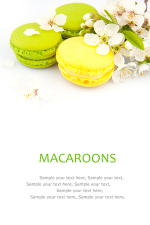 refined: Macaroon, refined tasty dessert and flowers, food photo Stock Photo
