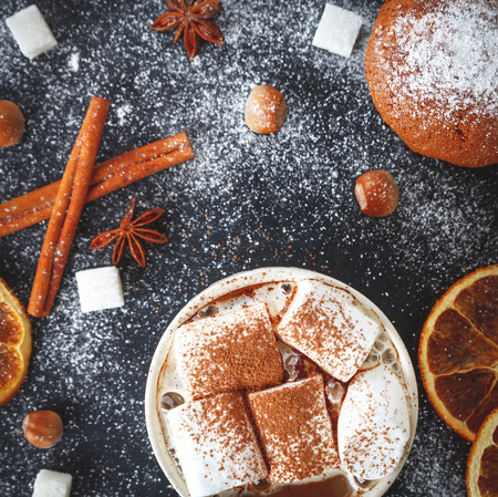 Cup of hot chocolate with marshmallows, cupcake and spices, fashionable food photo Stock Photo