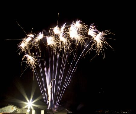 beautiful fireworks in terno and black sky isolated