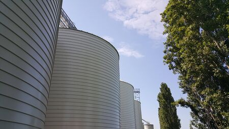 large white silos for cereal containment. High quality photo