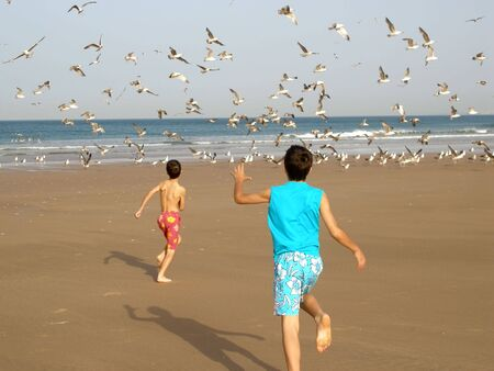 Two boys running after the birds on the beach