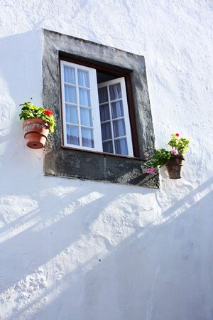 A view to a house facade showing a window and flowers