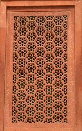 burried: Wall of Taj Mahal, India, with intricate designs and patterns in red sand stone