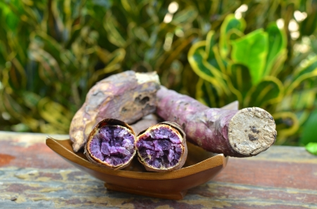 potato tree: Roasted Purple Sweet Yam on a plate