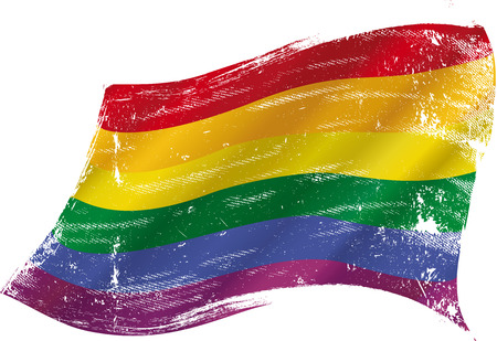 Gay flag with a texture in the win Vector
