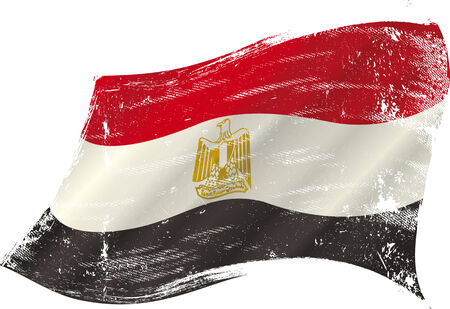 flag of  Egypt  in the wind with a texture Vector