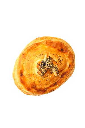 Freshly salmon pasty pie isolated