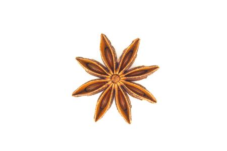 Star anise herb isolates on white back ground