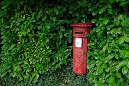 An old-fashioned red postbox surrounded by green leaves  photo