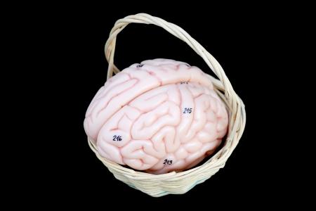 bowel surgery: Human organs Stock Photo
