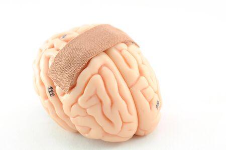 pain of human brain