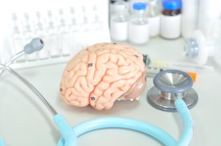 Human brain Banco de Imagens - 31529979
