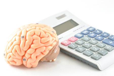 medulla: brain and calculator Stock Photo