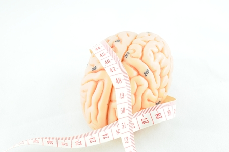 medulla: brain and  tape measure