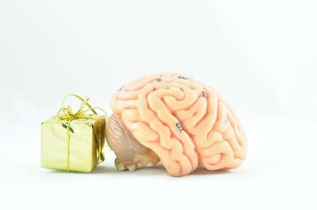 favour: brain and gift