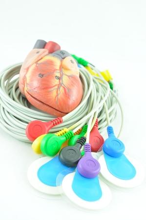 elettrocardiogramma: cavi di attrezzature elettrocardiogramma