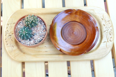 receptacle: wooden container and cactus on wooden table
