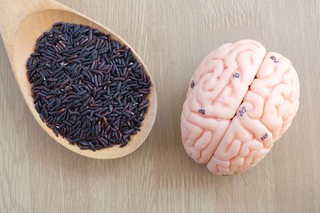 thalamus: brain and purple rice on wooden background Stock Photo
