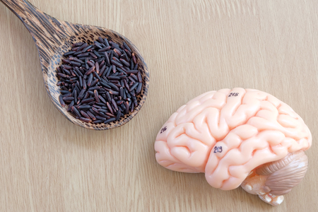 pons: brain and purple rice on wooden background with healthy concept