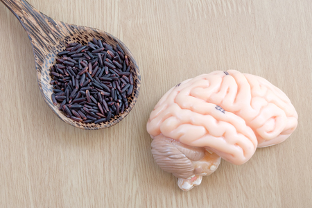 thalamus: brain and purple rice on wooden background with healthy concept