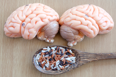thalamus: brain and mix of rice on wooden background with healthy concept Stock Photo