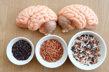 medulla: variety rice in the bowl and brain on wooden background with healthy concept