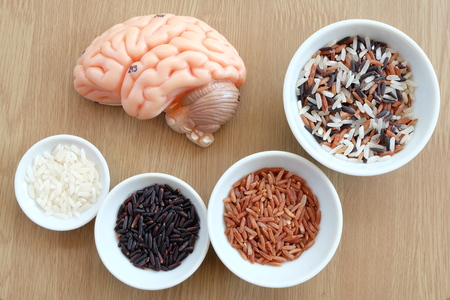 thalamus: variety rice in the bowl and brain on wooden background with healthy concept