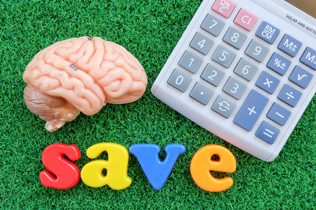 concep: calculator and brain  on green grass background in business concep