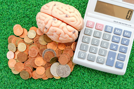 concep: calculator and brain with coin on green grass background in business concep