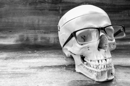 human skull with black and white color concept