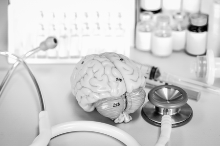 Human brain with black and white color Stock Photo - 78644719