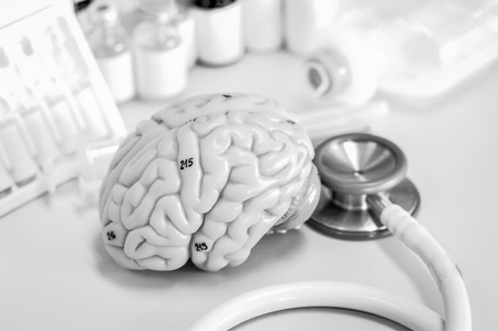 Human brain with black and white color