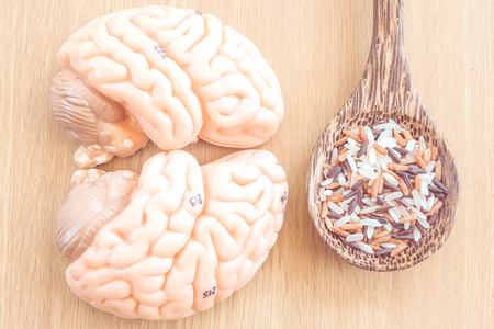 brain and mix of rice on wooden background with vintage color Stock Photo
