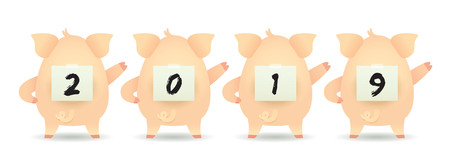 2019 year of the pig. Cute cartoon pigs with paper writing of 2019 isolated on white