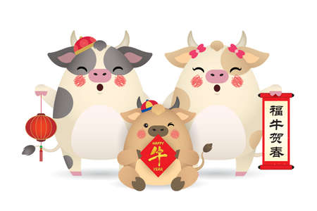 Cute cartoon cow family holding chinese scroll, couplet and lantern isolated on white background. 2021 Chinese new year - year of the Ox flat vector illustration. (translation: Happy new year)