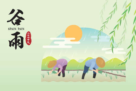 Guyu - one of the 24 solar terms in chinese calendars. Cartoon farmers transplant rice seeding in paddy field. Traditional agriculture, plowing. Flat vector illustration. (translation: Grain rain)