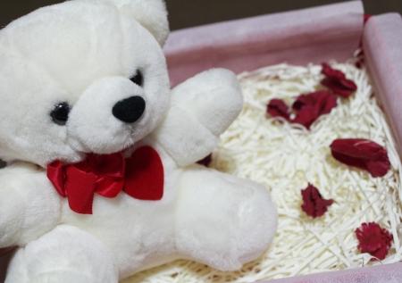 valentine s day teddy bear: Teddy Bear in the Box, Valentine s Day Stock Photo